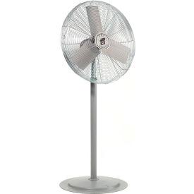TPI AC30P, 30 Inch Pedestal Fan Non Oscillating 1/4 HP 4300 CFM 1 PH Totally Enclosed Motor