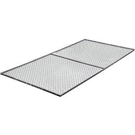 1' x 10' Roof Panel