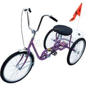 Industrial Tricycle 250 Lb Capacity Single Speed Coaster Brake Purple
