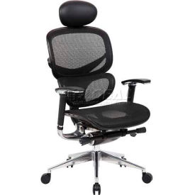 Ergonomic Mesh Back Task Chair with Air Mesh Seat & Headrest