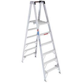 Werner 6' Type 1A Aluminum Dual Access Platform Ladder - PT376