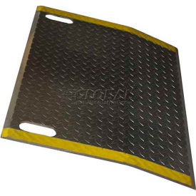 B & P Aluminum Dock Plate E6048-HS 60x48 2900 Lb. Cap with Hand Slots