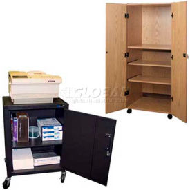 Mobile Enclosed Video Cabinet