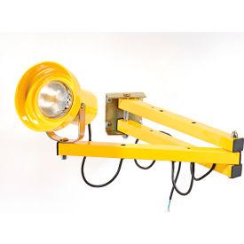 """Wesco® 272240 Double Arm Dock Light with 40""""L Reach, Par38 or BR40 bulb compatible"""