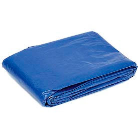 Global™ 8' x 10' Light Duty 2.9 oz. Tarp, Blue
