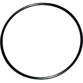 3M™ 55176 O-Ring, 24.0 x 1.0, 1 Pkg Qty