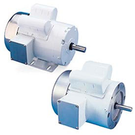 Leeson Washguard White Epoxy Coated Motors, Single-Phase