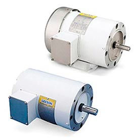 Leeson Washguard White Epoxy Coated Motors, 3-Phase, TENV