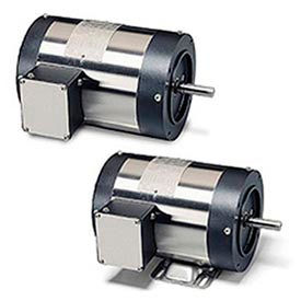 Leeson Washguard II Motors with Stainless Steel Frame