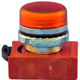 Springer Controls Motor Pilot Lights