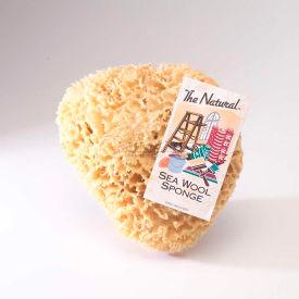 Natural Sea Wool & Yellow Painting Sponges