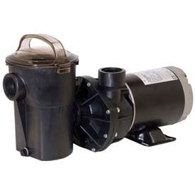 Above/On-Ground Pool Pumps