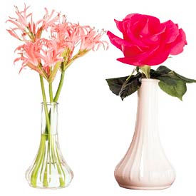 Dollar Store Crafts » Blog Archive » Bud vase for cheap