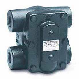 Steam / Water Heating | Steam Vents & Traps | F&T Steam ...