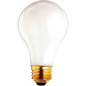 "Type ""A19"" Incandescent Lamps"