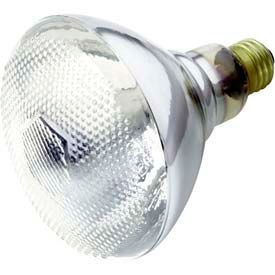 Reflector Flood and Spot Incandescent Lamps