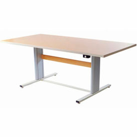"Infinity™ Powered Height Adjustable Group Therapy Table - 48""Lx36""W Maple"