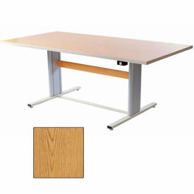 """Infinity™ Powered Height Adjustable Group Therapy Table - 48""""L x 36""""W Oak"""