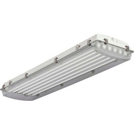 Lithonia Lighting FHE 654L 1/41/2 CS89 High-Pressure Hose-Down Food Processing, 6 Lamp, T5HO, 54W