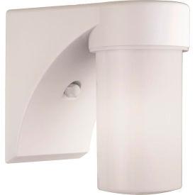 Lithonia JJ13LW 120 M6 Globe Shaped Fluorescent Entry Light, 13w, 120 Volt, White