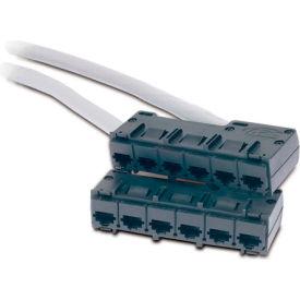APC® Data Distribution Cable, CAT5e UTP CMR Gray, 6xRJ-45 Jack to 6xRJ-45 Jack, 43-ft.