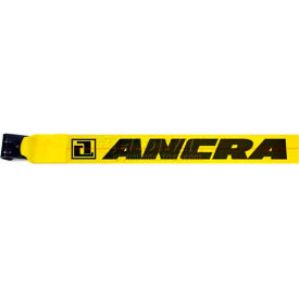 """Ancra® 43795-10-27 4"""" x 27' Winch Strap with 41766-18 Flat Hook"""