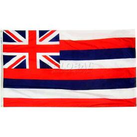 3X5 Ft. 100% Nylon Hawaii State Flag
