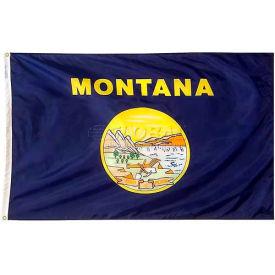 4X6 Ft. 100% Nylon Montana State Flag