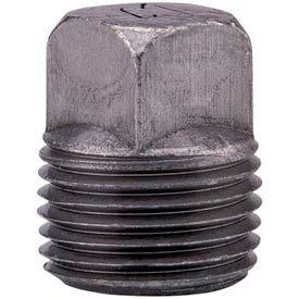 Anvil 1 In. Black Malleable Iron Solid Sq Head Plug