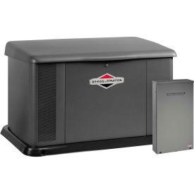 Briggs & Stratton®, 20kW Standby Generator, Dual 200 Amp Symphony II Switch, 40396