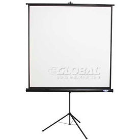 Buhl 60 x 60 Value Line Projector Screen, Square Format, Black Housing