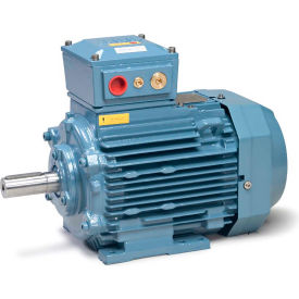 Baldor Metric IEC Motor, Flameproof, MM10034-EX2, 3PH, 230/400V, 1500RPM, 3/4 KW/HP, 50Hz, D100