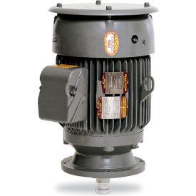 Baldor Motor VPCP4115T, 50HP, 1760RPM, 3PH, 60HZ, 326VP, 1246M, TEFC, F
