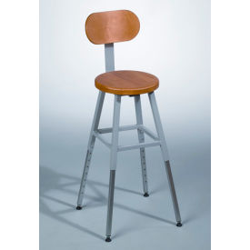 Optional Back for Lab Stool - Gray