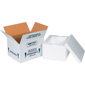 "Insulated Shipping Kits, 12"" x 10"" x 7"", 12 Kits"