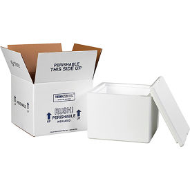 "Insulated Shipping Kit - Reusable & Recyclable, 9-1/2"" x 9-1/2"" x 7"""