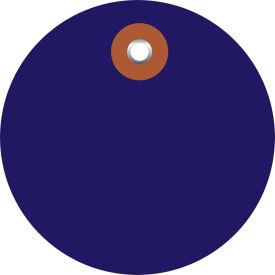 "Plastic Circle Tags 2"" Diamter Blue - 100 Pack"