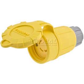 Bryant 29W48BRY Watertight Connector, NEMA L6-30R, 30A/250V