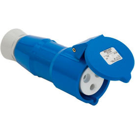 Bryant 316P6S Splashproof Plug, 2 Pole, 3 Wire, 16A, 200-250V AC, Blue