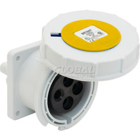 Bryant 332R4W Receptacle, 2 Pole, 3 Wire, 32A, 100-130V AC, Yellow