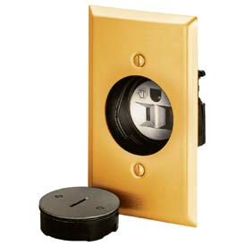 Bryant 3799G Display Receptacle, 15A, 125V, Brass
