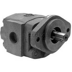 "Buyers H21 Series Hydraulic Pump, H2132123, 2 Bolt, 3000 Max Pressure, 1"" Keyed 1/4 KW Shaft"