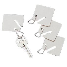 Sandusky Buddy 0016 15 White Fiber Key Tags White Package Count 12 by