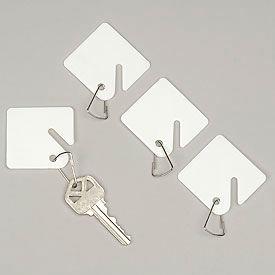 Sandusky Buddy 0017 - 100 Blank Plastic Key Tags - White