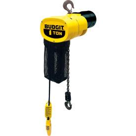 CM® Columbus McKinnon Budgit Electric Chain Hoists