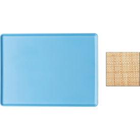 "Cambro 1219D123 - Tray Dietary 12"" x 19"", Amazon Blue - Pkg Qty 12"