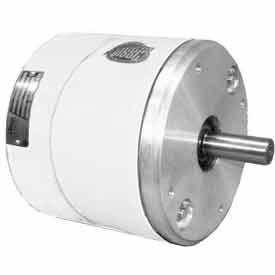 """NEMA 4 Washdown Brakes for 182TC-256TC Motors - 1-3/8"""" Dia. 575V 50 lb-ft"""