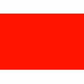 """3"""" x 6"""" Fluorescent Red Rectangle"""