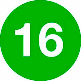 """4"""" Dia. Green Disc With # 16"""