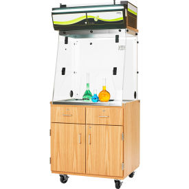 Mobile Fume Hood Station